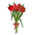 red tulips bouquet vector image vector image