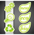 set of eco labels green icons vector image