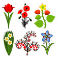 set stylized flowers vector image vector image