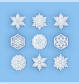 snowflakes collection paper snowflake vector image vector image