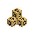 bitcoin golden small bitcoin pyramid vector image