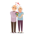 Happy senior couple vector image