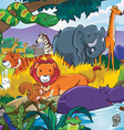 animals and their habitats vector image