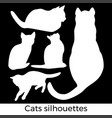 cats collection - silhouette color set of vector image vector image