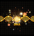 dna molecule on line golden pattern vector image vector image