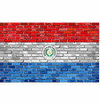 flag of paraguay on a brick wall vector image
