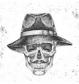 hand drawing hipster skull with hat vector image vector image