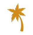 palm tree plant design vector image