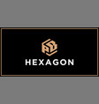 pb hexagon logo design inspiration vector image vector image