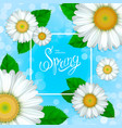 spring collection background vector image vector image