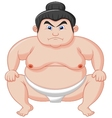 Sumo wrestler cartoon vector image