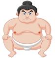 Sumo wrestler cartoon vector image vector image