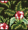 tropical botanical composition hibiscus palm vector image vector image