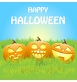 background with pumpkins on grass eps10 vector image