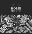 Culinary herbs banner template hand drawn vintage