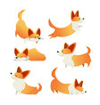 dog - modern set of flat vector image vector image