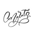 hand drawn calligraphy lettering text vector image vector image