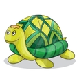 Happy little cartoon turtle smiling vector image vector image