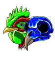 mascot rooster head and skull vector image vector image