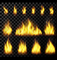 red realistic fire set on a transparent background vector image