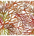 sea moss pattern vector image