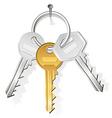 keys on nail vector image
