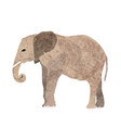 an elephant calm in the room near white wall vector image