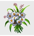 bouquet white wildflowers vector image vector image