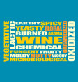 drink alcohol beverage wine tastes words cloud vector image vector image