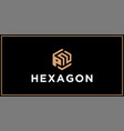 pn hexagon logo design inspiration vector image vector image