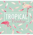 Tropical Bird Flamingo Background Summer Design vector image vector image