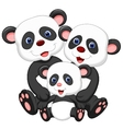 Panda bear family cartoon vector image