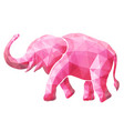 beautiful low poly with pink elephant vector image