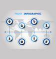 infographic design with fruit icons vector image