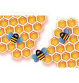 origami gold honeycomb and honey bee in paper cut vector image