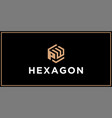 pw hexagon logo design inspiration vector image vector image