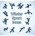 Winter sports icons set vector image vector image