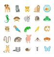 Animals pets flat colorful icons set vector image vector image