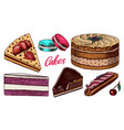 cakes and cream tarts fruit desserts and muffins vector image vector image