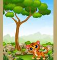 cartoon baby tiger in the jungle vector image vector image