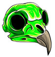 green color bird skull head vector image vector image