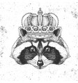 hipster animal raccoon in crown vector image