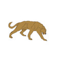 lioness color vector image