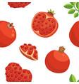 fresh pomegranates hand drawn background doodle vector image