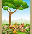 cartoon baby kangaroo with baby deer in the jungle vector image vector image