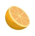 cartoon sliced orange fruit icon vector image vector image