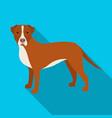 labrador single icon in flat stylelabrador vector image vector image