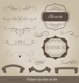 set calligraphic design elements and page decorati vector image vector image