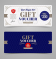 Template Gift voucher with glitter silver vector image vector image