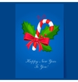 Lollipop Christmas greeting card with text vector image
